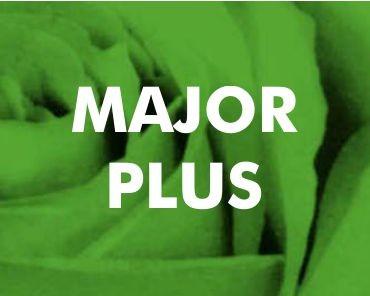 Major Plus